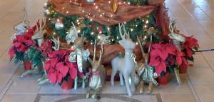 CLUB RENAISSANCE bottom of Christmas Tree, Sun City Center, Florida