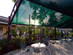 Early morning sun shinning through the green canopy on the patio at pool at the South Club in Kings Point, Sun City Center, Florida
