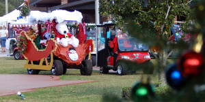 GOLF CARTS parked on lawn after 2013 Golf Cart Parade in Sun City Center