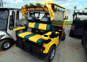Green Bay Packers themed back seats on STARev 48V-SS customized golf cart in Sun City Center FL