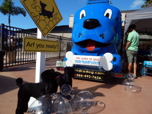HYDO DOG Water Truck at Golf Cart Parade 2013 Sun City Center