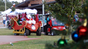 Holiday Decorated golf carts by Town Hall at Winter Festival 2013 Sun City Center