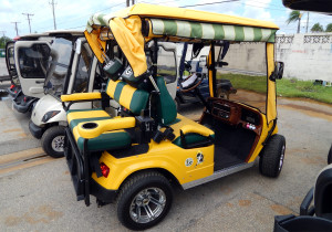 Left side of Green Bay Packers STARev 48V-SS customized football golf cart in Sun City Center FL