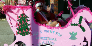 Pink Sleigh customized golf cart at Sun City Center Holiday Golf Cart Parade 2013