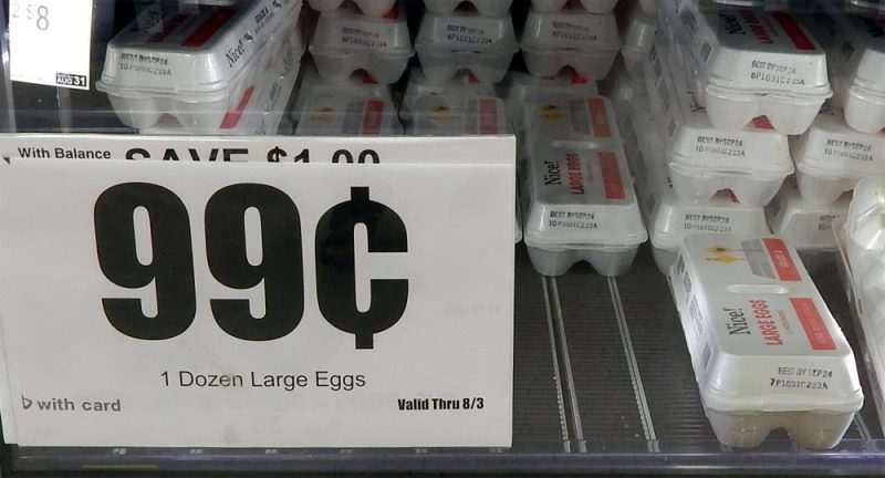 One Dozen Large Nice Eggs 99 cents at Walgreens, Sun City Center, Florida [staff photo]