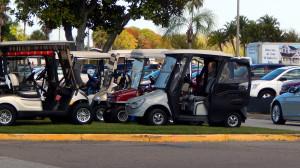 Golf Carts parked on grass island on North Pebble Beach Blvd for 2014 Fun Fest Sun City Center, FL