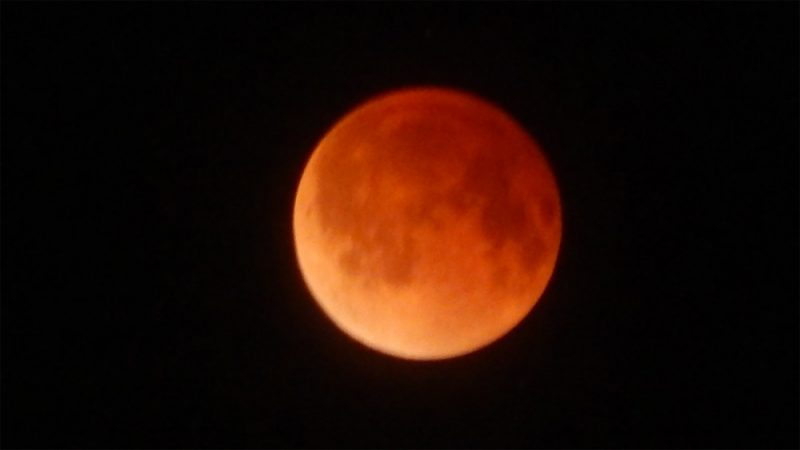 blood moon today in florida - photo #19