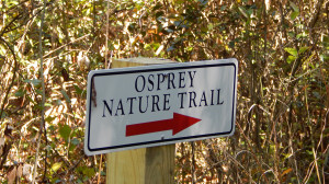 Nature Hiking Trail OSPREY Mini Nature Trail, Sun City Center, FL