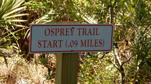 Nature Hiking Trail OSPREY Mini Trail 09 miles, Sun City Center, FL