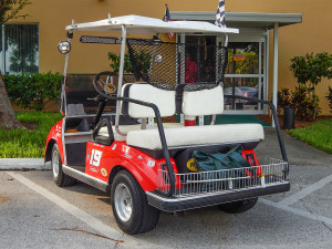 Rear view of the Offical Evernham Doge RT Nascar Club Car golf cart, Sun City Center, FL
