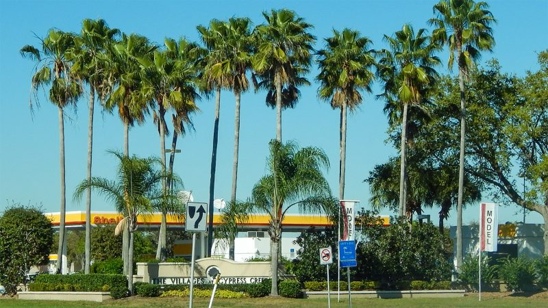 Shell Gas Station with palms opened 9 to 5 everyday in Sun City Center, FL