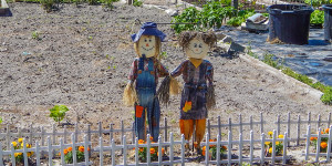Tillers and Toilers, SCARECROWS, Sun CIty Center, FL