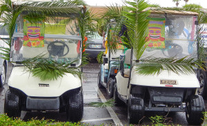 Palm Tree leafs on golf carts for Relay For Life at SCC Chamber of Commerce