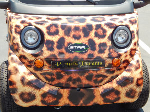 STARev Smile with leopard paint job in Sun City Center Plaza