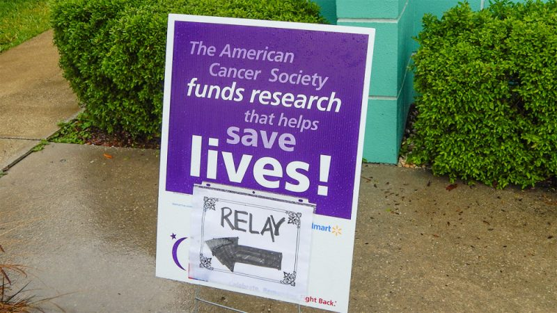 research program from among those funded by the american cancer society