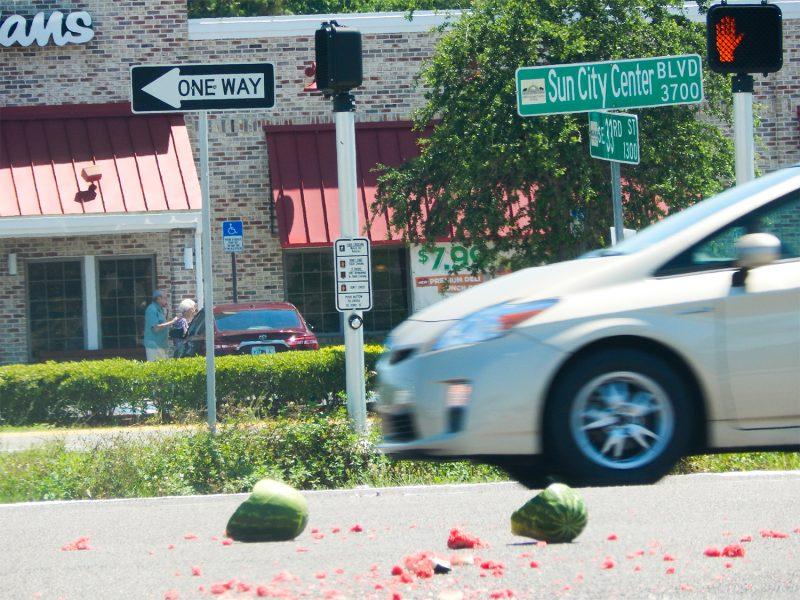 Cars avoiding watermelons on SR 674, Sun City Center, FL