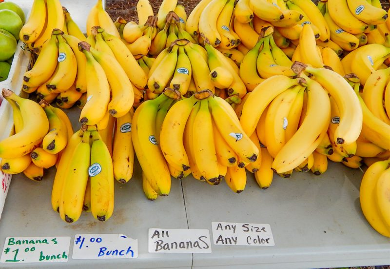 Banana prices $1.00 per bunch at Wolf's Farmer's Market in the Kings Point community of Sun City Center for June 2014