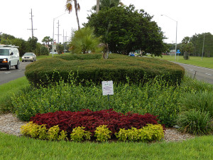 Island on S.R. 674 decorated by Beautification Committe, Sun City Center, FL