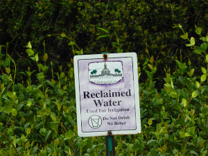 Sign on island on S.R. 674 that reads 'Reclaimed Water Not For Drinking' in Sun City Center, FL