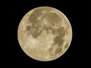 Super Moon in Sun City Center, South Shore Florida, Tampa Bay on Saturday July 12, 2014