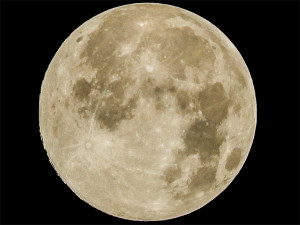 Supermoon photographed in Tampa Bay, Sun City Center, South Shore Florida on Saturday July 12, 2014