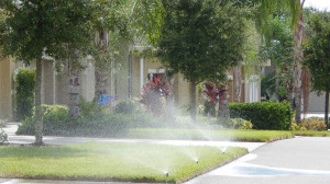 Aug 7, 2014 - Grass getting watered by sprinkler system in the day in Kings Point developement in Sun City Center, FL
