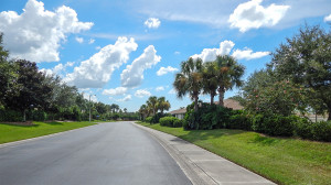 Aug 7, 2014 - Kings Point neighborhood landscape maintained by Mainscape