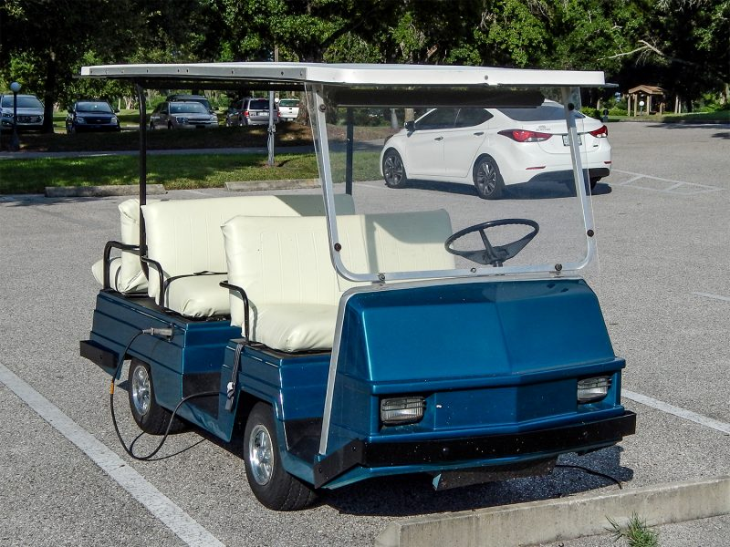 Pargo Golf Cart With Six Seats