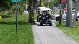 Aug 13, 2014 - South Bay Hospital provides golf cart path for residents in Sun City Center, FL