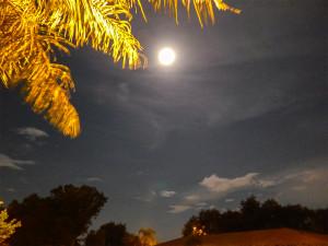 Aug 10, 2014 -Supermoon, Sun City Center, FL